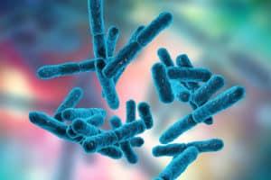Importancia de la Microbiota Intestinal y los Probióticos en la Salud 1